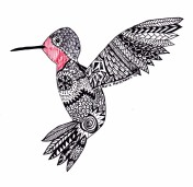 hummingbird-zentangle